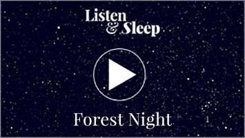 forest night evening sleeping sound music