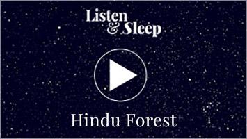 hindu forest night sound music sounds meditation concentration